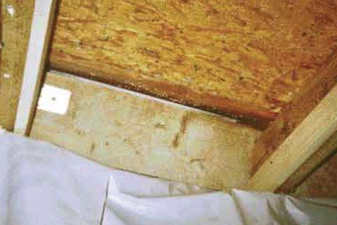Luftdichtheit: Schimmelpilz im neuen Dach