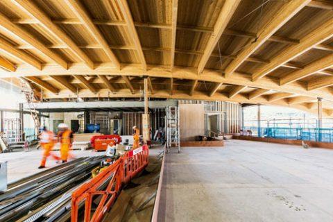 Organische Holzbau-Architektur