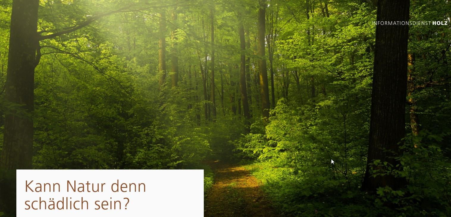 """Wald Broschüre """"Kann denn Natur schädlich sein?"""""""