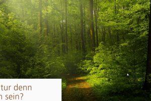 """Grüner Wald, Broschüre """"Kann denn Natur schädlich sein?"""""""