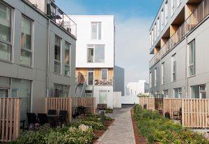 Begrünte Dachsiedlung in Kopenhagen