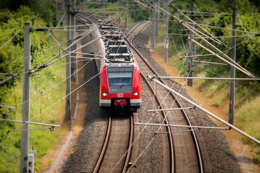 Roter Zug im Waldgebiet