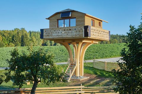 Holzbauträume