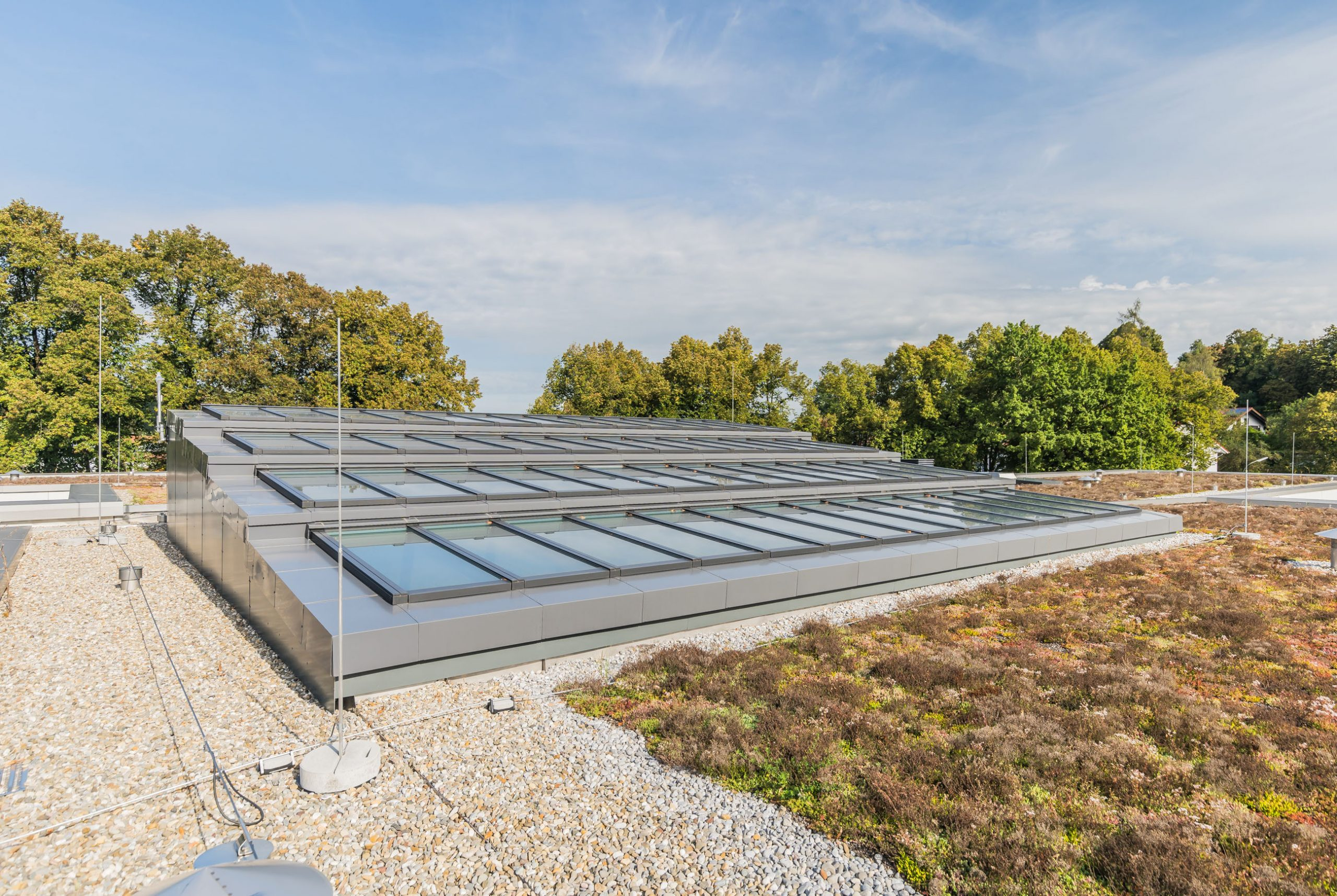 Lichtelemente Dach