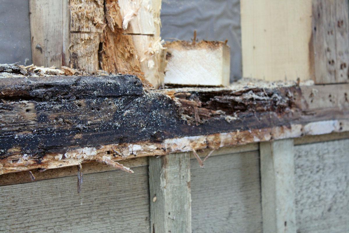 Holzbautechnik